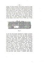 giornale/TO00180507/1898/unico/00000219