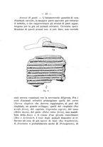 giornale/TO00180507/1915/unico/00000061