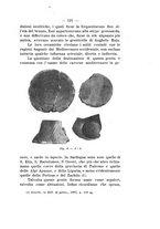 giornale/TO00180507/1915/unico/00000151