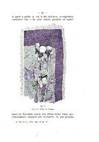 giornale/TO00180507/1917/unico/00000059