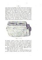 giornale/TO00180507/1917/unico/00000129