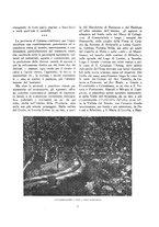 giornale/TO00181044/1933/unico/00000013