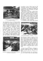 giornale/TO00181044/1933/unico/00000017