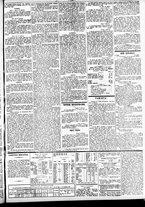 giornale/TO00184828/1860/febbraio/19
