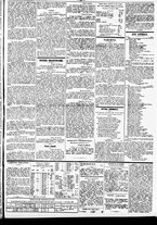 giornale/TO00184828/1860/febbraio/55