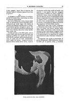 giornale/TO00189117/1896/unico/00000111