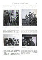 giornale/TO00189459/1903/unico/00000035
