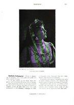 giornale/TO00189459/1903/unico/00000209