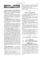 giornale/TO00189459/1904/unico/00000049