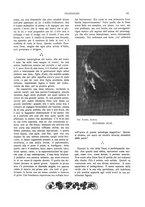 giornale/TO00189459/1904/unico/00000057