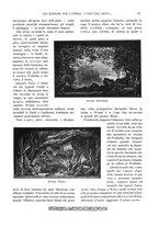 giornale/TO00189459/1904/unico/00000085