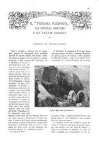 giornale/TO00189459/1905/v.1/00000099