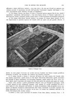 giornale/TO00189459/1905/v.1/00000141
