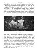 giornale/TO00189459/1905/v.1/00000170