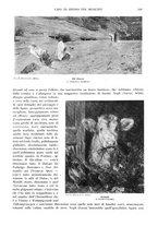 giornale/TO00189459/1905/v.1/00000207