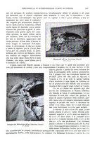giornale/TO00189459/1905/v.2/00000041