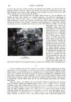giornale/TO00189459/1905/v.2/00000108