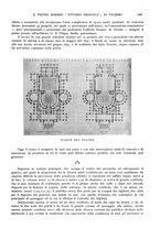 giornale/TO00189459/1905/v.2/00000169