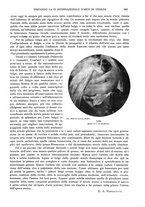 giornale/TO00189459/1905/v.2/00000203
