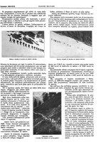 giornale/TO00189567/1935/unico/00000031