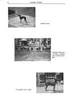 giornale/TO00192225/1935/unico/00000012