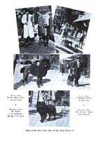 giornale/TO00192225/1935/unico/00000033