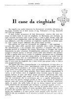 giornale/TO00192225/1935/unico/00000101