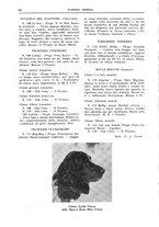 giornale/TO00192225/1935/unico/00000122