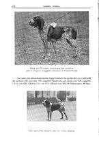 giornale/TO00192225/1935/unico/00000196