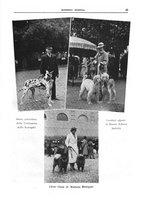 giornale/TO00192225/1937/unico/00000043