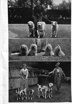 giornale/TO00192225/1937/unico/00000045