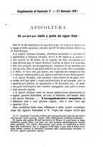 giornale/TO00199507/1884/unico/00000081