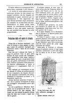 giornale/TO00210416/1899/unico/00000167