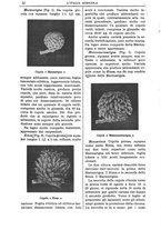giornale/TO00210416/1910/unico/00000018