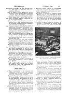giornale/UM10007435/1904-1905/unico/00000023