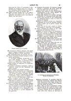 giornale/UM10007435/1904-1905/unico/00000039