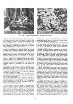 giornale/VEA0009388/1945/unico/00000020