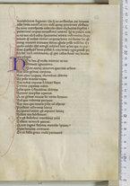 manoscrittoantico/BNCR_Ms_VE_0443/BNCR_Ms_VE_0443/49
