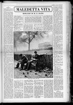 rivista/UM10029066/1950/n.24/13