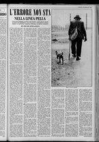 rivista/UM10029066/1951/n.39/3