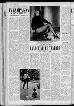 rivista/UM10029066/1955/n.27/12