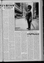 rivista/UM10029066/1955/n.39/7