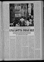 rivista/UM10029066/1955/n.40/3