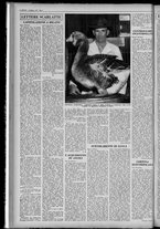 rivista/UM10029066/1955/n.6/6