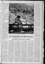 rivista/UM10029066/1962/n.45/17