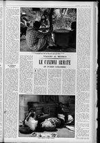 rivista/UM10029066/1962/n.45/7