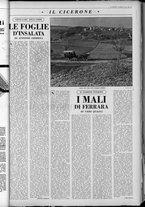 rivista/UM10029066/1962/n.7/13
