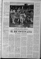 rivista/UM10029066/1963/n.18/19