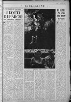 rivista/UM10029066/1963/n.3/15