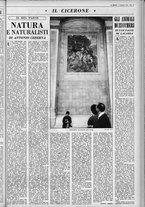 rivista/UM10029066/1963/n.49/13